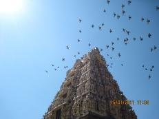 Belur, Karnataka, India